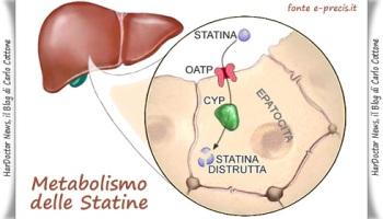 Dolore muscolare associato all'uso di statine, efficacia della metformina
