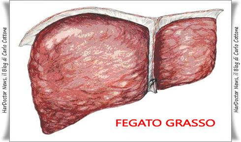 fegato grasso2