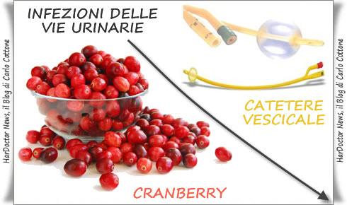 Cranberry e Cistiti