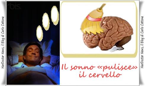 Il sonno «pulisce» il cervello