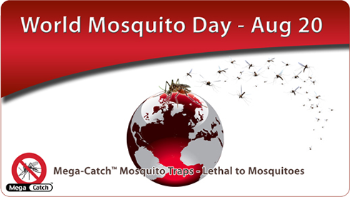 Word Mosquito Day