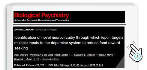 Leptina, ormone anti-fame, scoperti nuovi segreti